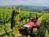 Vineyard trimmer Tecnovict 180