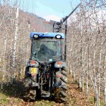Pruner for apple orchard